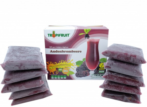 Andenbrombeere (Mora) – 1kg Box (10 x 100g)
